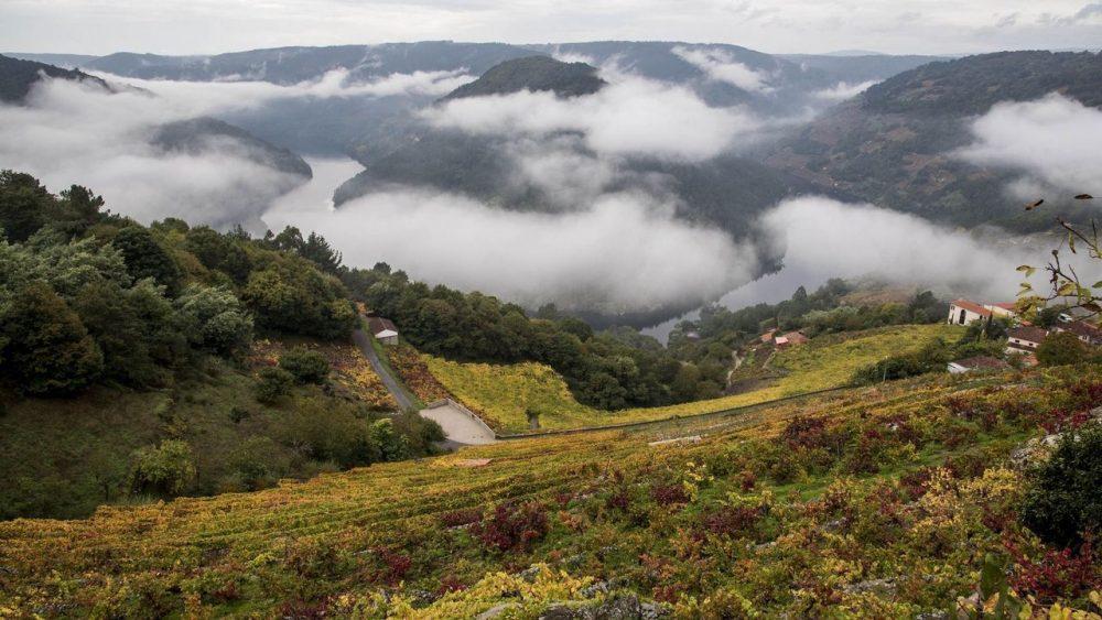 Galicia Startups 2021